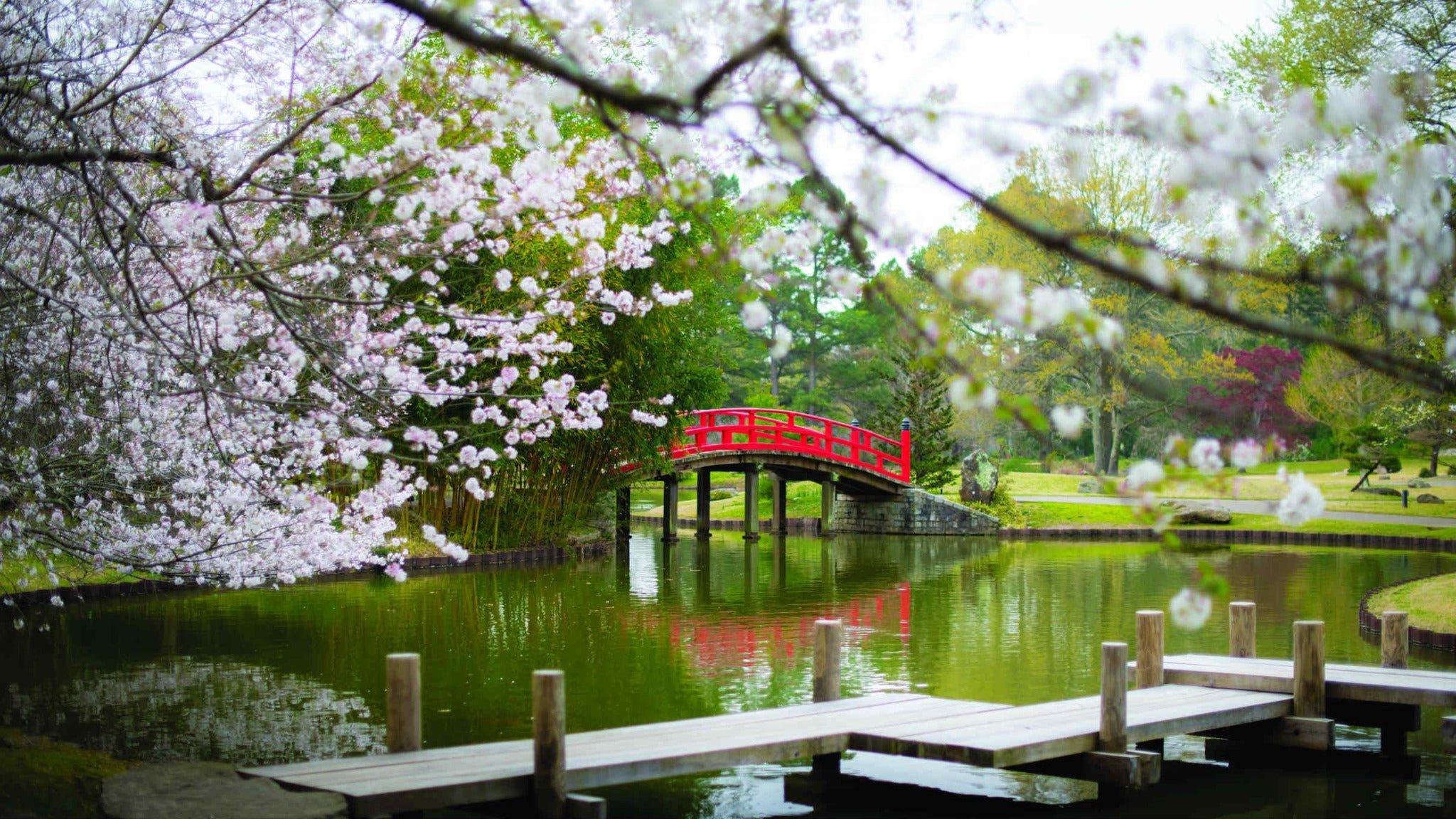 Memphis date ideas in botanic garden