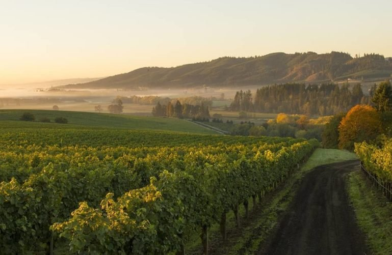 Willamette Valley, Portland