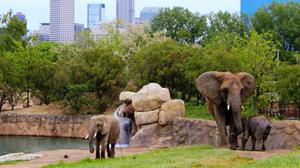 Indianapolis Zoo - Indianapolis Date Ideas
