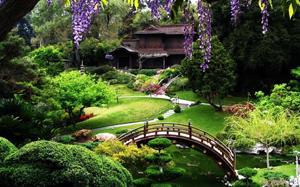 Botanical Garden - San Francisco Date Ideas